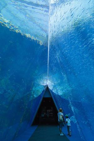 三角トンネル.jpg