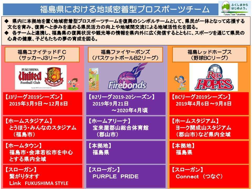 地域密着型プロスポーツ紹介シート.jpg