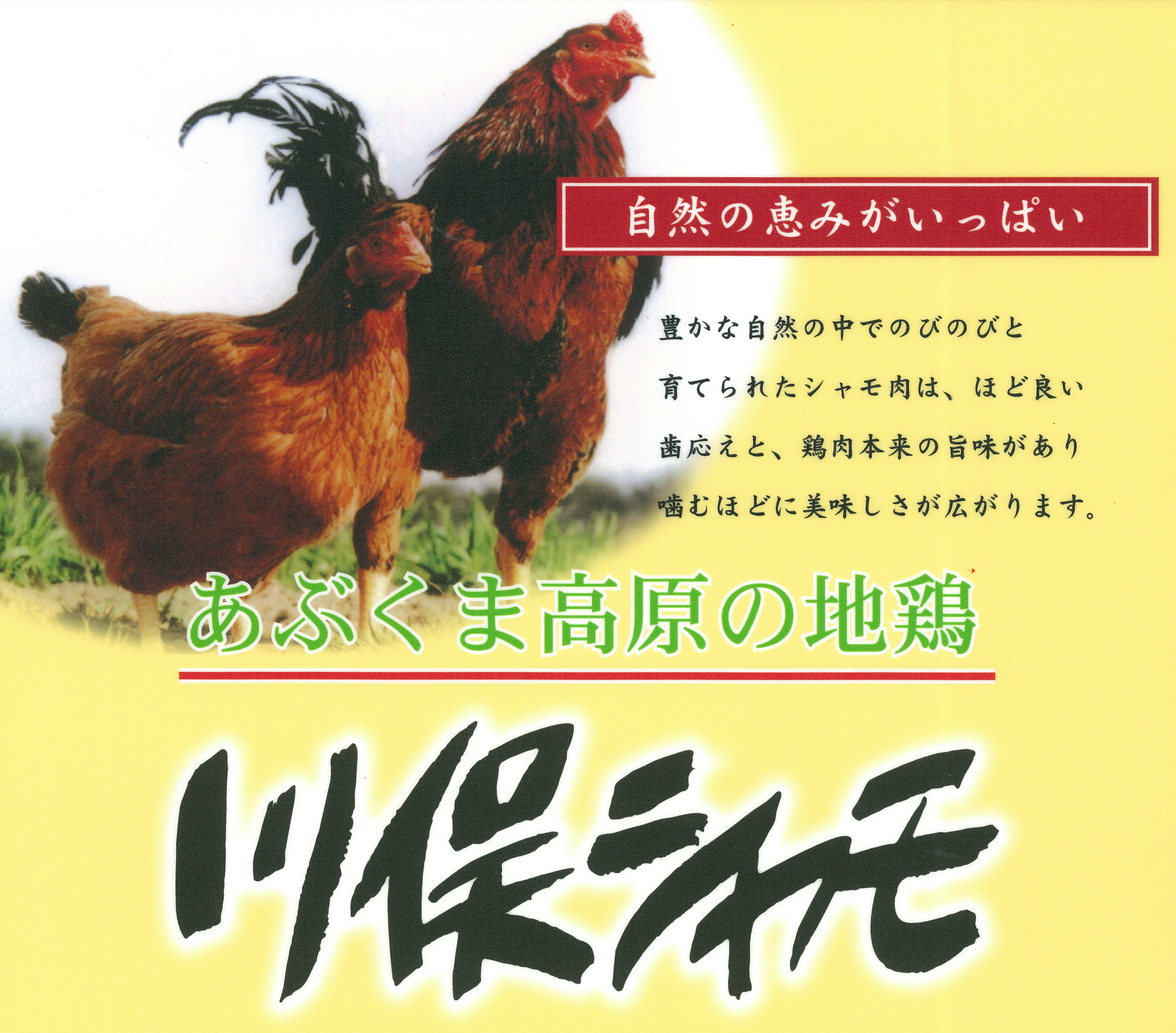 【トリム】川俣シャモ看板-1枚 2羽と肉 黄色B4.jpg